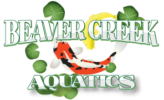Beaver Creek Aquatics